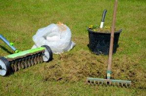 Moos Entfernen Was Hilft Fur Rasen Terrasse Und Haus